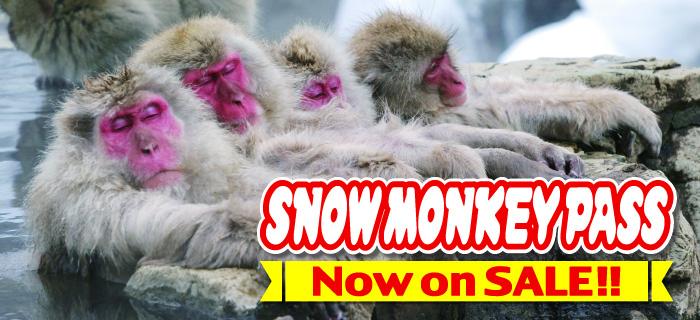 SNOW MONKEY PASS