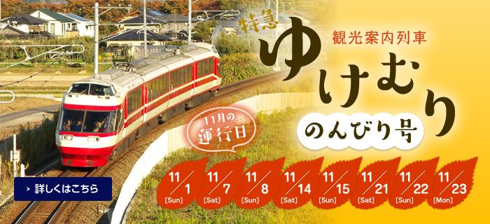 観光案内列車『特急ゆけむり~のんびり号~』